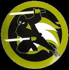 ninja8.jpg